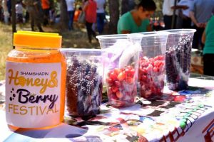 Honey and Berry Festival, Berd Tavush